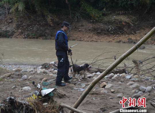 图为公安警犬搜救队在河边搜寻小媛。 文成警方供图摄