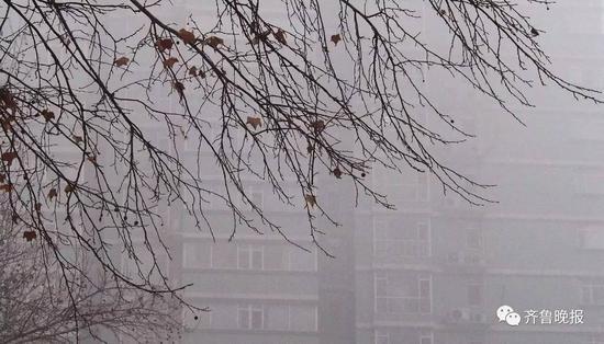5日早上,济南的污染依旧严重。