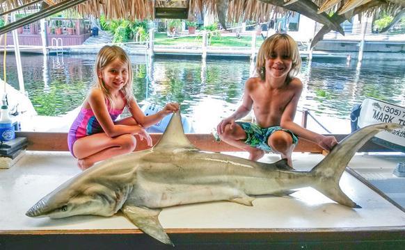 小兄妹跟老爸出海捕鲨鱼
