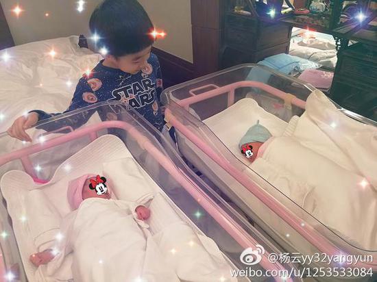儿子杨阳洋和双胞胎妹妹