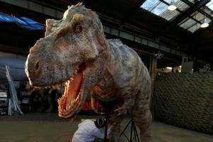 男孩喜欢恐龙 因吃恐龙形状饼干改善厌食症
