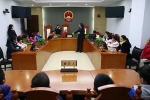 安全教育日 海淀法院面向小学生开展普法宣教