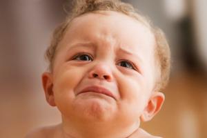 哪儿的宝宝最爱哭