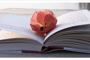 你的气质里,有你读过的书和爱过的人