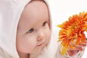 如何帮助宝宝建立健康的免疫系统?