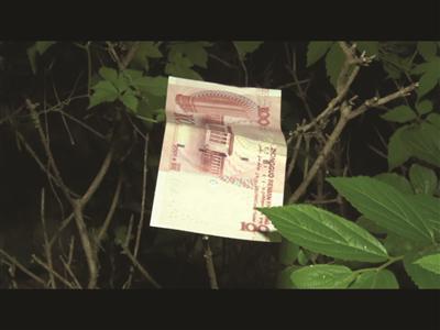 掉落在草丛里的钞票。