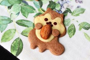 零难度超萌酥脆小饼干--松鼠饼干(图)