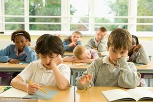 澳媒:西澳推行课程改革 所有小学需设一门外语课