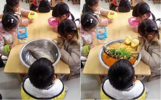 让娃带鱼去幼儿园