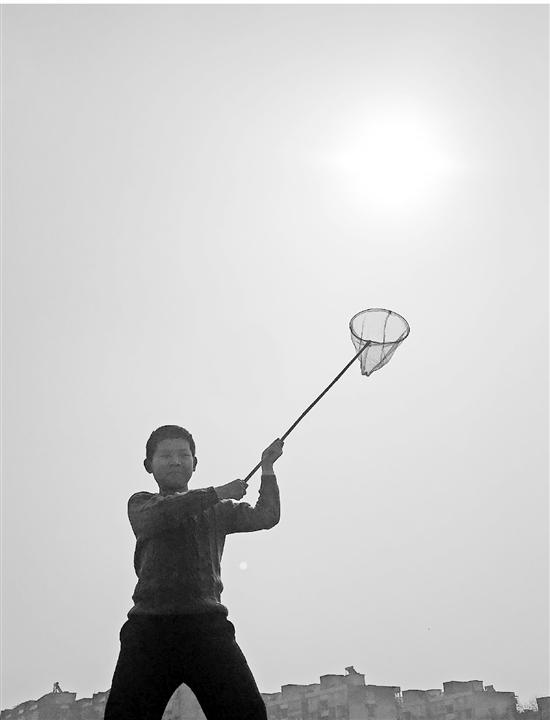 杭州出太阳 小学校长布置作业:给我晒太阳去