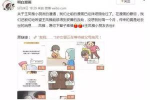 """媒体批""""小凤雅之死""""网络言论:主题先行的道德指控"""