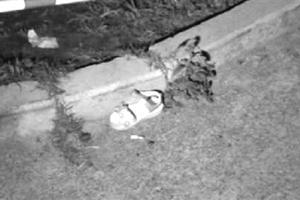 4岁女童从12楼坠亡 事发时家中无人