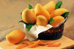 产妇坐月子能吃芒果吗?