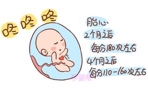 胎儿这些生命体征的正常指标,孕妈们了解吗?