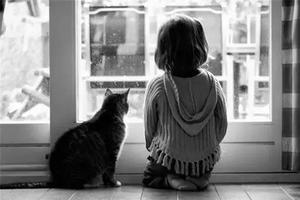 """最好的教育,是不急着让孩子说""""对不起""""!"""