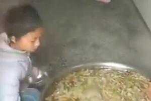 小学生在地上打饭像喂猪遭曝光 教育局:餐车坏了