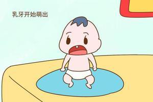 宝宝多大开始出牙, 什么时候需要刷牙