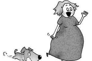 小狗未拴绳吓到孕妇 丈夫驱赶反被狗主人打倒踹头