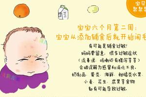 宝宝6个月2周喂养与关注:不要忽视宝宝辅食过敏