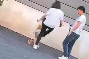 人民日报:踢踹的是童模 伤害的是童年