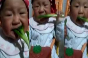 萌娃吃葱表情走红 父亲:孩子爱吃身体指标正常