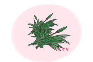 激素残留最高的蔬菜不是黄瓜 为了孩子健康