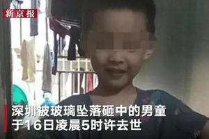 """当地街道司法所介入""""深圳男童被砸事件"""""""