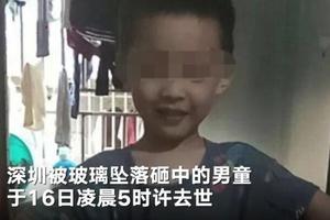 深圳被砸男童事件续:小区已更换部分窗户