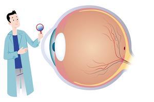 近视不可治愈但能矫正 早发现早干预是关键