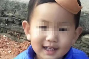 湖北鄖西2歲半男童在家門口走失近3天 警方正搜尋