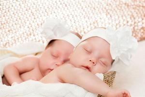 双胞胎的宝宝需要怎样科学喂养?