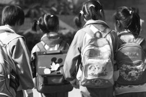 近十年城市小学生数量:厦门增速最快 北方城市增速低