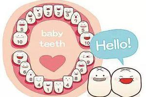 宝宝长牙,何时开始?何时结束?