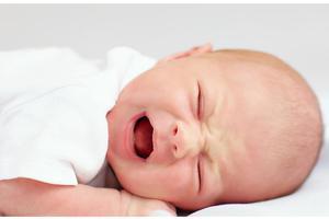 《张思莱小课堂》第28期:是不是宝宝一哭就应该马上喂他