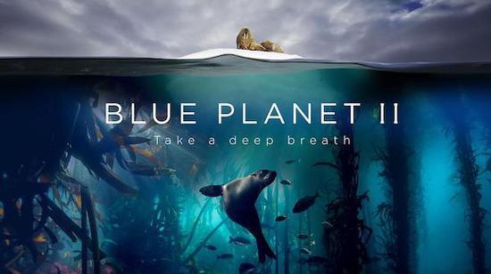 4年制作6000小时水下拍摄