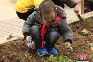 贵州加强中小学安全风险防控体系建设