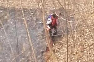郑州11岁男孩只身扑灭山火 爸爸点赞并告诫先报警