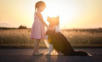 汪星人与小女孩的纯真友谊