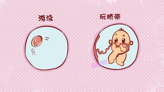 http://n.sinaimg.cn/baby/transform/w550h309/20171229/j3DT-fyqefvv9803479.jpg