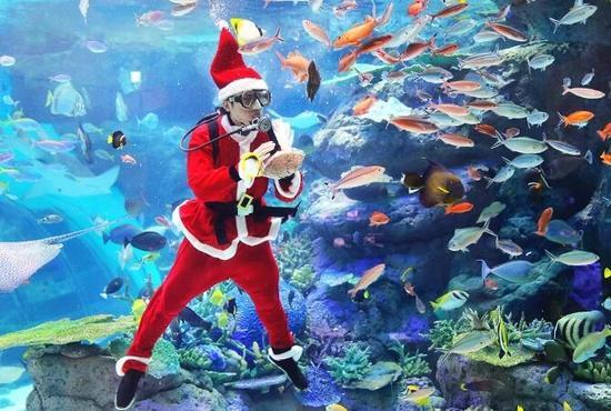 12月里随处可见的圣诞活动