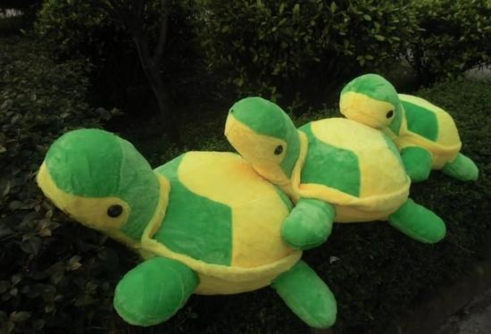 十二生肖有积木?一万葡萄小学生答错这题乌龟多名之百变布鲁克图片