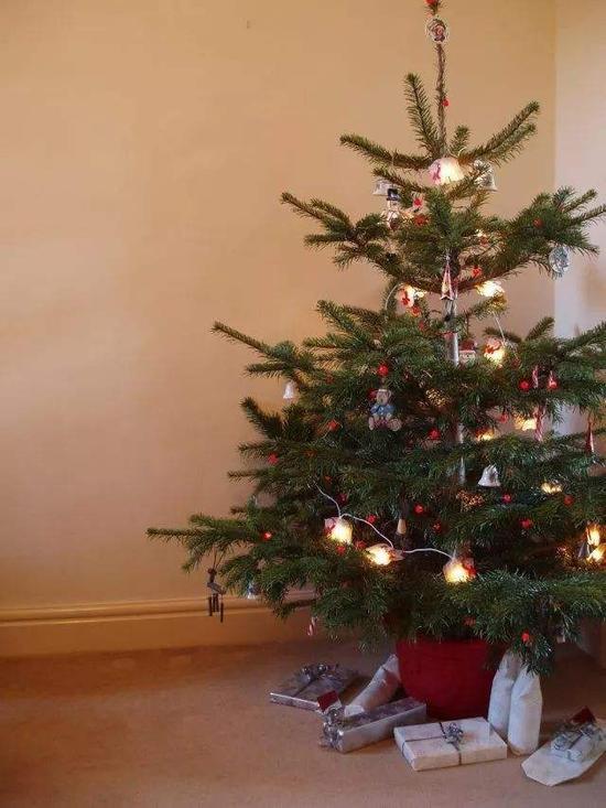 淘宝圣诞树 你值得拥有