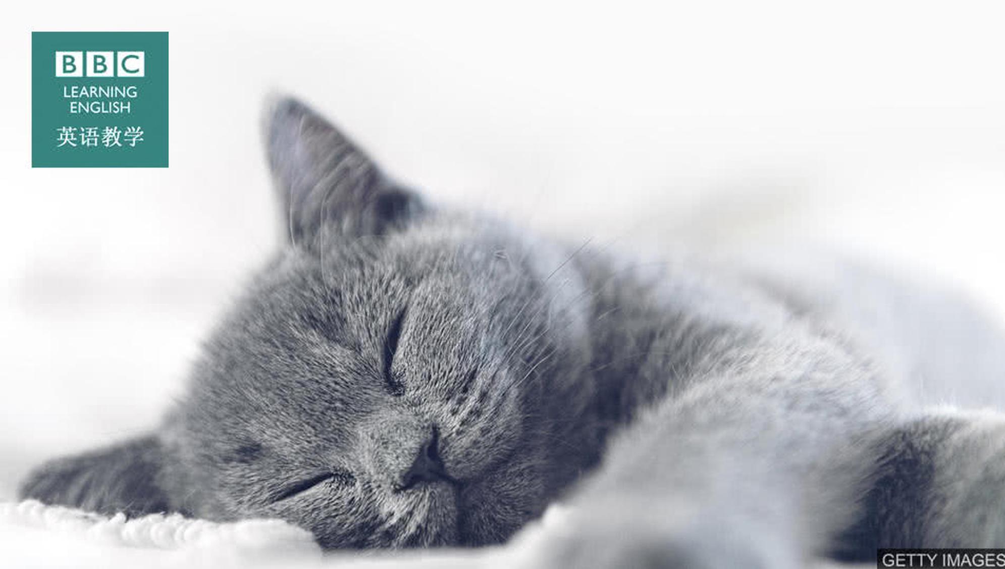"""BBC英语小测验:和""""睡眠""""有关的英语词组"""