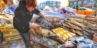 中俄江鱼市场大开眼界