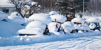 冬天的北海道长这样