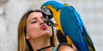美女与鹦鹉