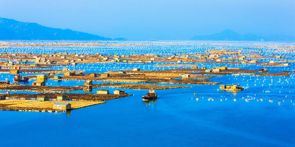 探秘霞浦海上渔村
