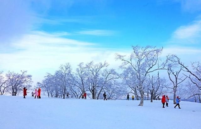 冰雪画廊!气势恢弘的林海雪原水墨画卷