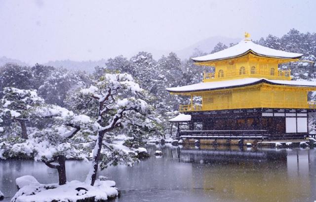 一起去看雪!盘点日本最美十大冬景
