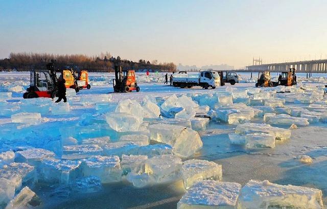 实拍哈尔滨冰雪世界,松花江采冰全过程